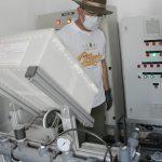 Jabar Kembangkan Bisnis Sapi dan Budidaya Lobster